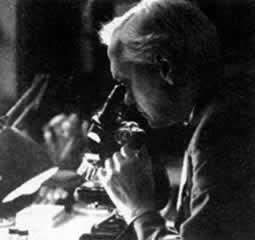 弗莱明发明青霉素