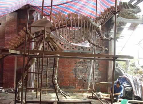我国首次在四川永川县发现一具比较完整的恐龙化石